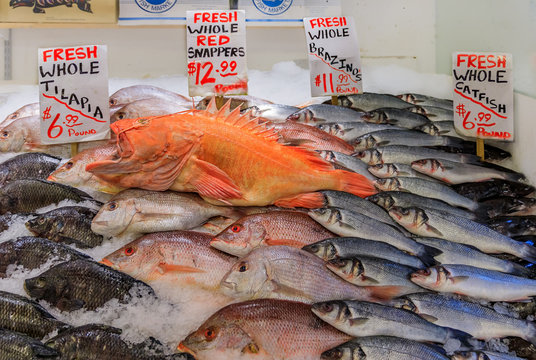 Fresh fish on ice for sale at Pike Place Market in Seattle