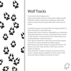 Cover Design with Traces of Forest Animal, Traces of a Predatory Animal Wolf, Vector Illustration