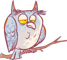 A fun little owl .