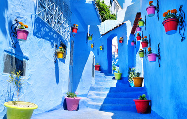 Garden Poster Morocco Traditional moroccan architectural details in Chefchaouen Morocco Africa