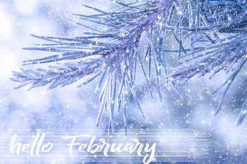 HELLO FEBRUARY greeting card. Winter holidays concept.