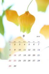 2019年カレンダー 9月 (サンダーソニア)