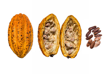 Creative layout made of fresh cacao fruit, cacao fruit cut in half, unpeeled cacao beans and cacao nibs with half sliced on the white background. Flat lay. Food concept.