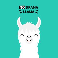 Llama alpaca animal face neck, tooth. No drama. Cute cartoon funny kawaii smiling character. Childish baby collection. T-shirt, greeting card, poster template print. Flat design. Green background.