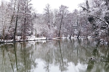 snow lake in forest