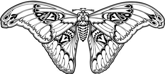 Butterfly in art nouveau style