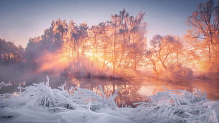 Aluminium Prints Salmon Winter scenery at sunrise