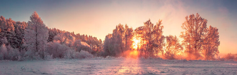 Photo sur Aluminium Campagne Panorama of winter nature landscape at sunrise. Christmas background