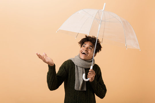 Portrait of excited african american guy wearing sweater and scarf standing under umbrella, isolated over beige background