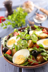mixed vegetable salad with egg