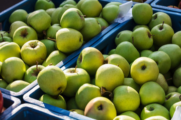green apples at the farmers market