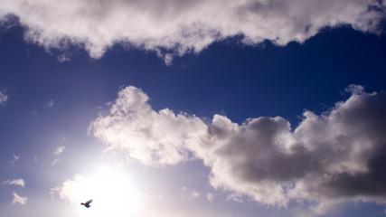Big clouds & sunlight