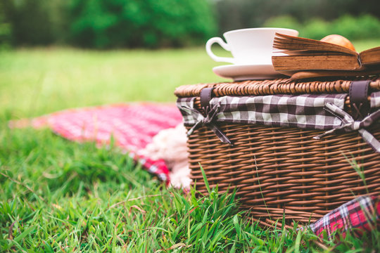 Summer picnic with book and food on wicker basket in the park.