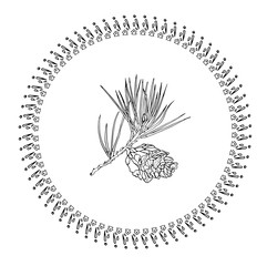 Winter decorative Snowflake and branch of pine tree with cone.