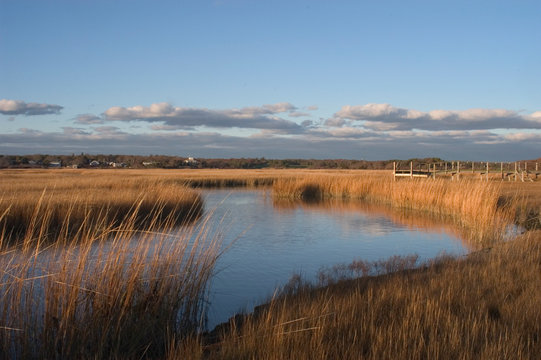 Hyannis Port Salt Pond