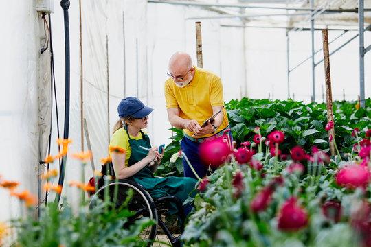 Supervisor Explaining Disabled Gardener At Greenhouse