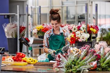 Florist Arranging Gerbera Daisies At Greenhouse