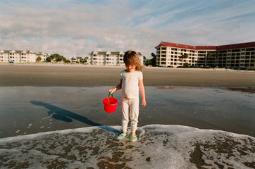 little girl collects shells in red bucket on beach