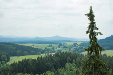 Landscape in mountains in Czech Switzerland national park, pine forest and rocks