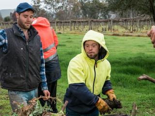 Crew of Men Work on Farm