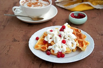 Delicate dessert waffles on a white plate with whipped cream and berries.