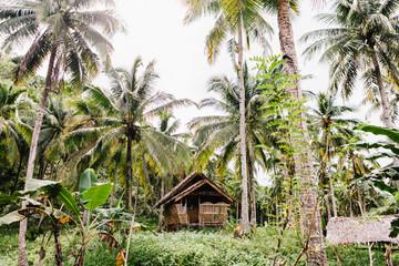 A Siargao Island Hut