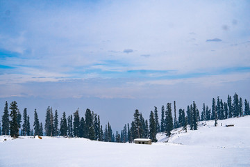 Snow Capped Mountains in Gulmarg