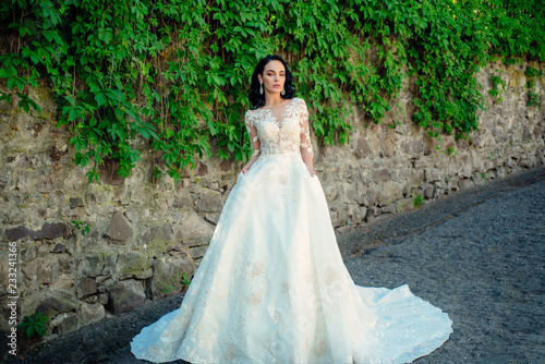 1ea9b1072 Wonderful bridal gown. Beautiful wedding dresses in boutique. Elegant  wedding salon is waiting for