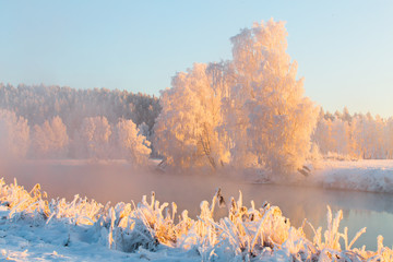 Colorful winter landscape
