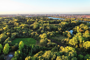 Luftaufnahme leuchtend grüner Wald mit See im Hintergrund