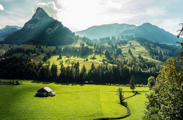 Berner Alpen, Schweiz, Kiental mit Wiesen, Wald und Bergen