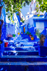 Garden Poster Morocco Blue stairs of Chefchaouen, Morocco