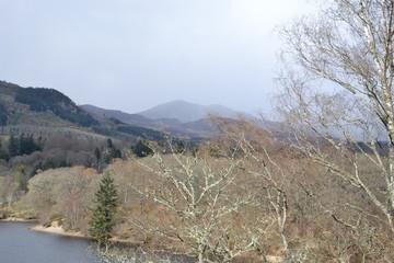 Предгорья Грампианских гор в апреле: вид с реки Таммел