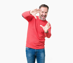 Handsome middle age hoary senior man wearing winter sweater over isolated background Smiling doing frame using hands palms and fingers, camera perspective