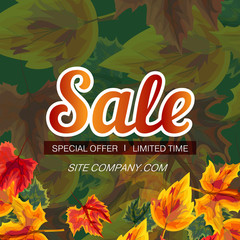 Trendy design of modern web banner with word Sale and autumnal leaves on green background