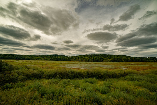 View from observatory overlooking wildlife refuge under cloudy sky