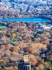 ニューヨーク 紅葉のセントラル・パーク