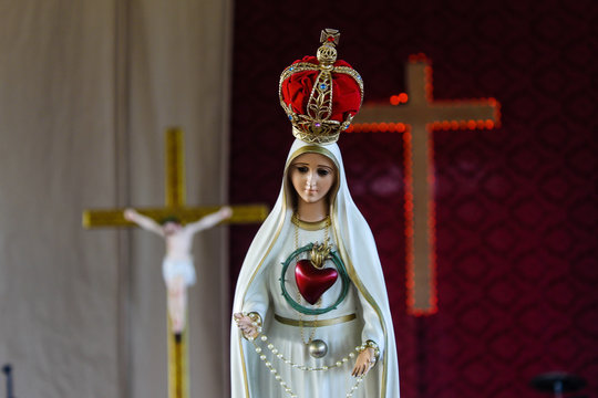 image of the virgin mary - immaculate heart