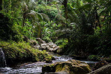 River in stones of tropical jungle nature at the Banner image. Jungle nature of Bali island. Nature beauty of tropical forest. Natural rainforest landscape of Indonesia