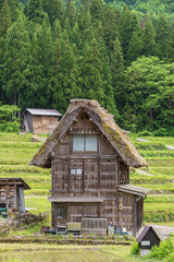 Fototapete - Thatched cottage in historic Village of Shirakawa-go in Japan