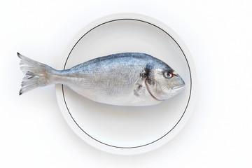 Gilthead fish over a white dish. Healthy mediterranean gastronomy. Horizontal