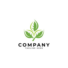 Nature green leaf vector icon logo