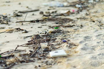 branch tree plastic rubbish dump on sand sea beach from deep sea after finish strong wind rain monsoon