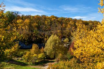 Buk canyen in autumn