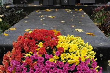 Chrysanthèmes jaunes et mauves devant une tombe
