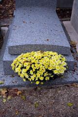 chrysanthèmes jaunes devant une tombe