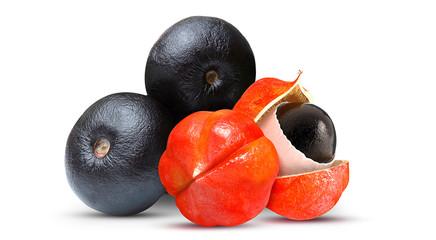 Açaí e Guaraná Frutas