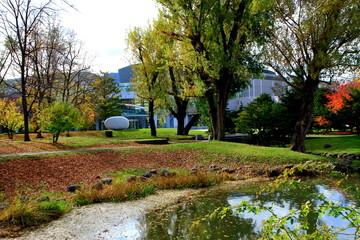 北海道、札幌中島公園秋の散歩道