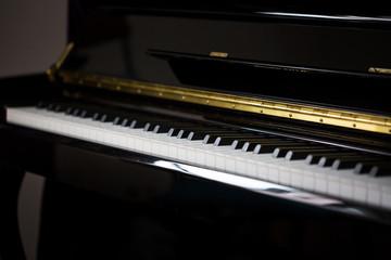 Musical instrument - piano keys