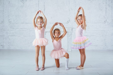 Children girls in ballerina costumes are engaged in dancing.